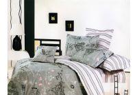 La Scala, комплект постельного белья Y230-445, сатин
