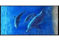 Полотенце пляжное Shamrock. Три дельфина, размер  75х150