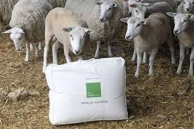подушка из овечьей шерсти плюсы и минусы