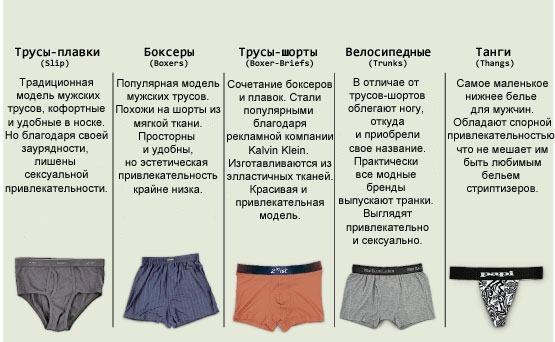 Основные виды мужских трусов
